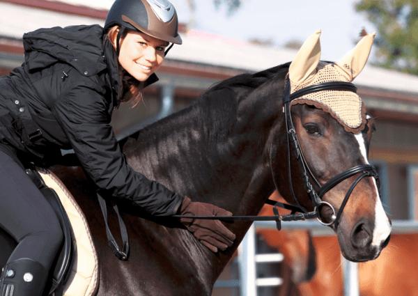 eigenes-Pferd