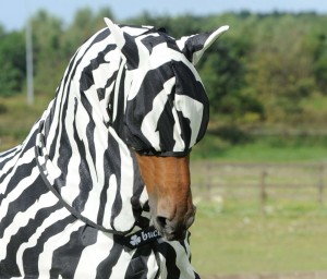 Zebra Buzz Off Fly Mask