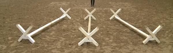 Stangenarbeit-und-Cavaletti-Training3