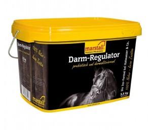Darm-Regulator