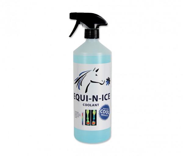 Equi-N-Ice Spray