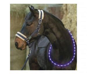 LED-Leuchthalsring für Pferde