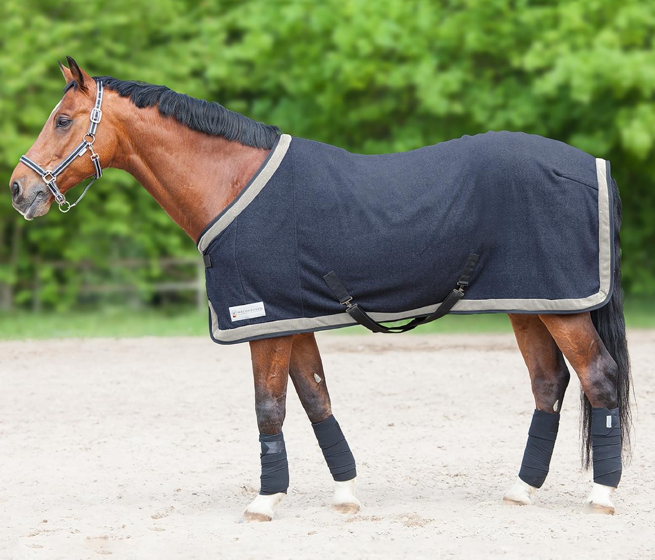 Halfter ALCANTARA Waldhausen Horse Fashion NEU