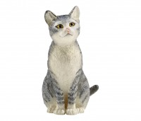 Katze, sitzend